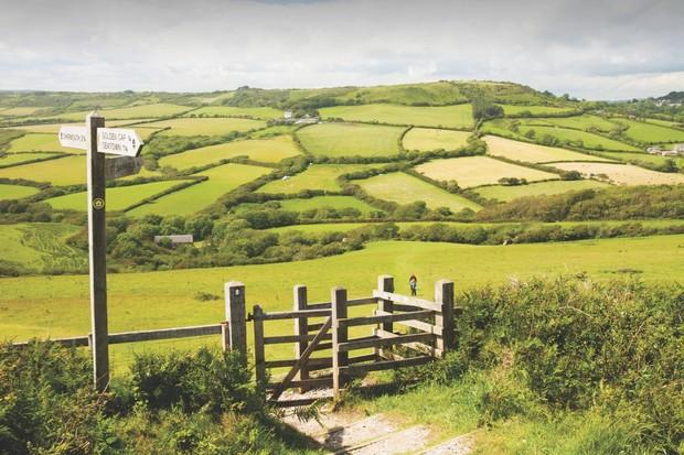 Three, O2 and Vodafone Team Up To Improve Rural Network Coverage